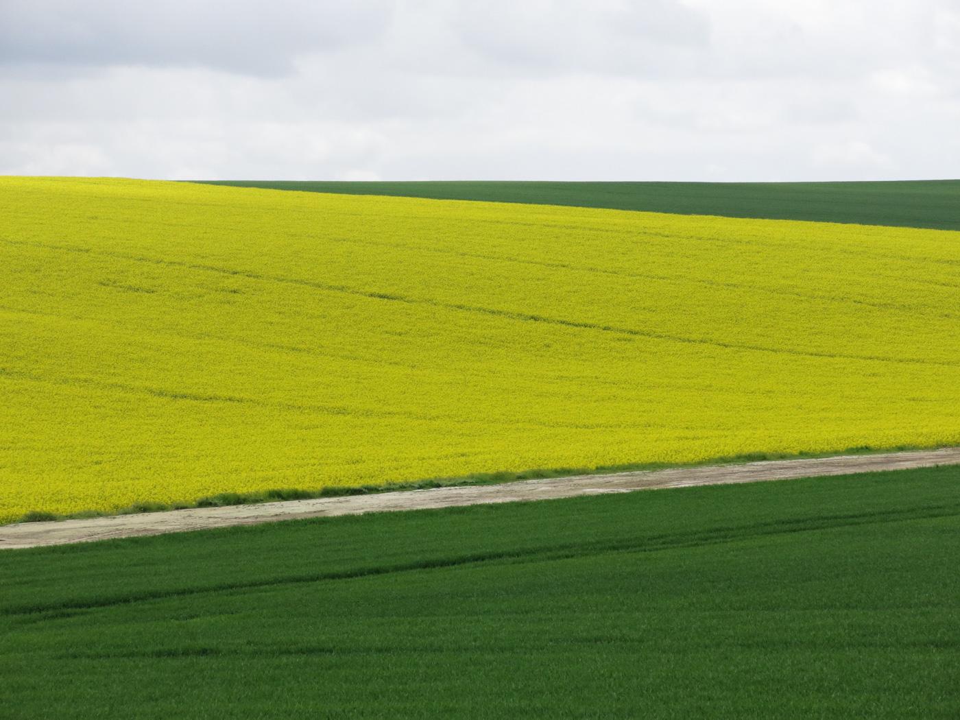 Viviane Vansina - landschap.