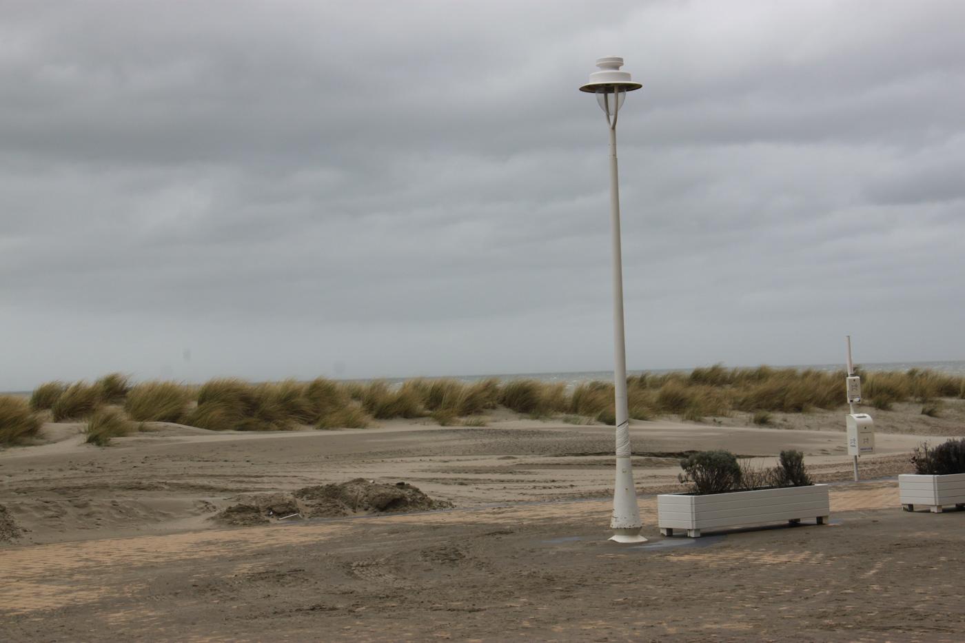 pascal vanalphen -  landschap