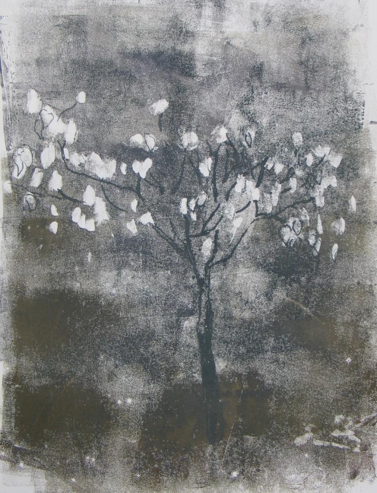 Handkerchief tree  (Davidia Involucrata),unique monotype, 2013