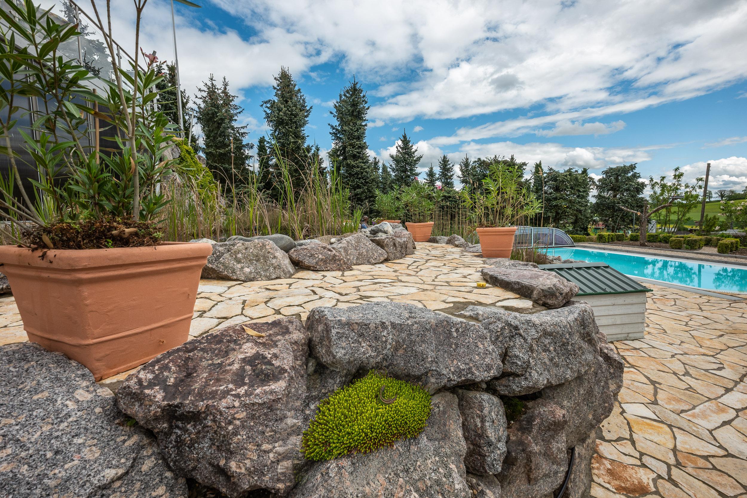 Garten mit mediterranem Flair. Gerne gesehene Gäste sind Eidechsen, ein paar Frösche beleben den Teich, und auch Vögel aller Art besuchen den Garten