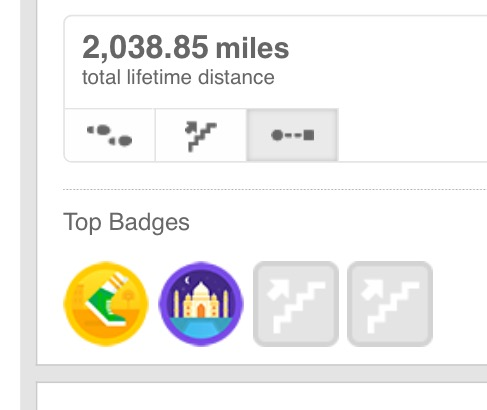 "There are definitely downsides to fitbits and other technology, and I don't wear mine in the house, while practicing, or when I'm not walking, but it's helpful to keep track of miles for the year, especially if you don't want to use ""Track My Walk"" on your phone."