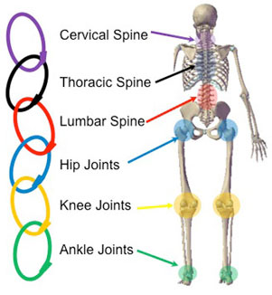 Kinetic chain image