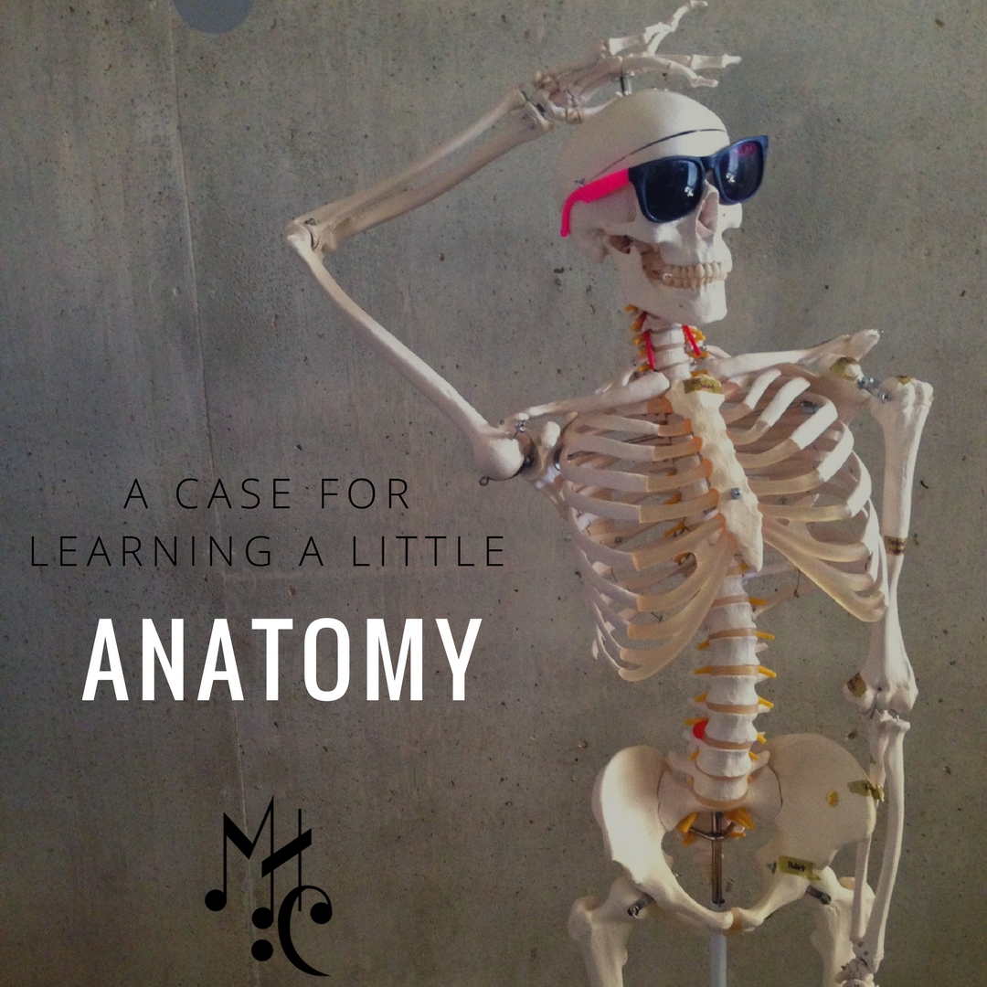 Anatomy doesn't have to just be serious.  It can actually be a fun way to learn how amazing the body is, in all of its intricacy.