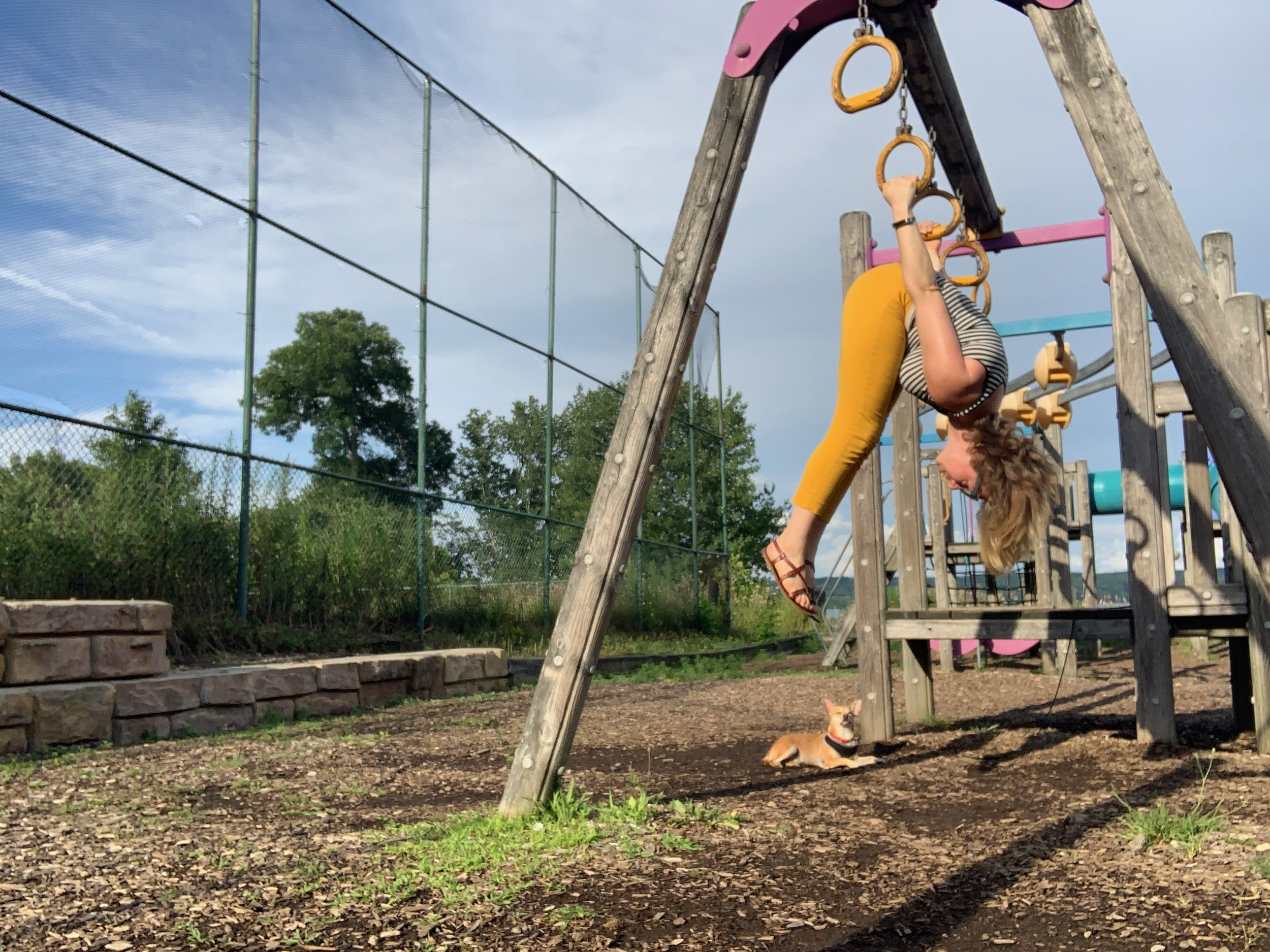 "I love playing on monkey bars and rings, and this movement, sometimes called ""skin the cat"" or ""cat walkover"" feels great in my body.  It's not particularly functional to tasks of daily living but it feels good to me, so I practice it."