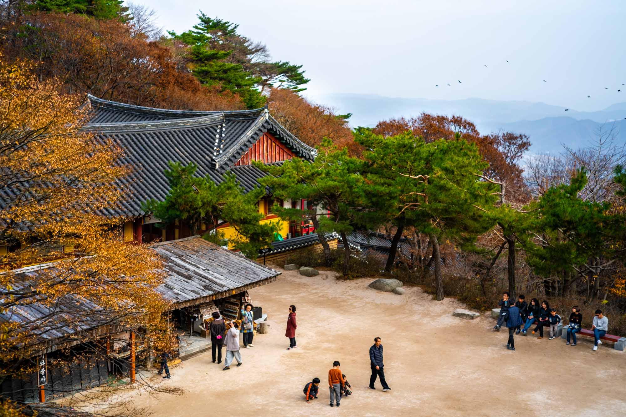 gyeongju-day-night-denis-bosnic-37.jpg