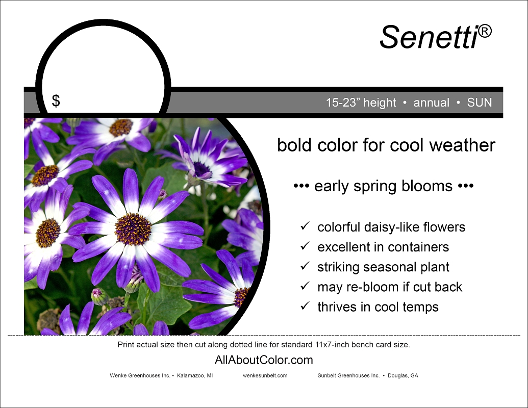Senetti® bench card |  pdf