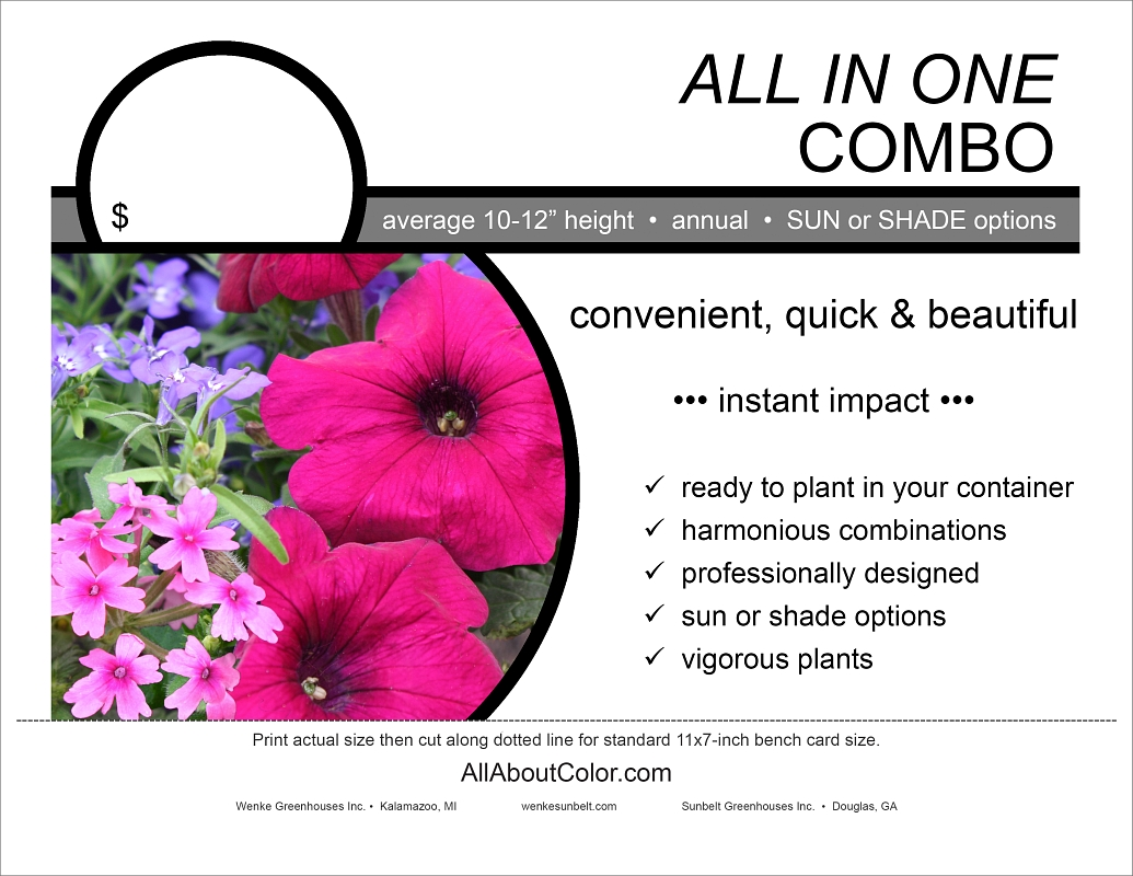 All in One Combo bench card |  pdf