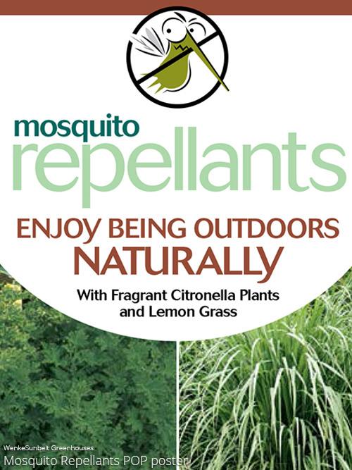 aac-mosquito-repellant-pop.jpg