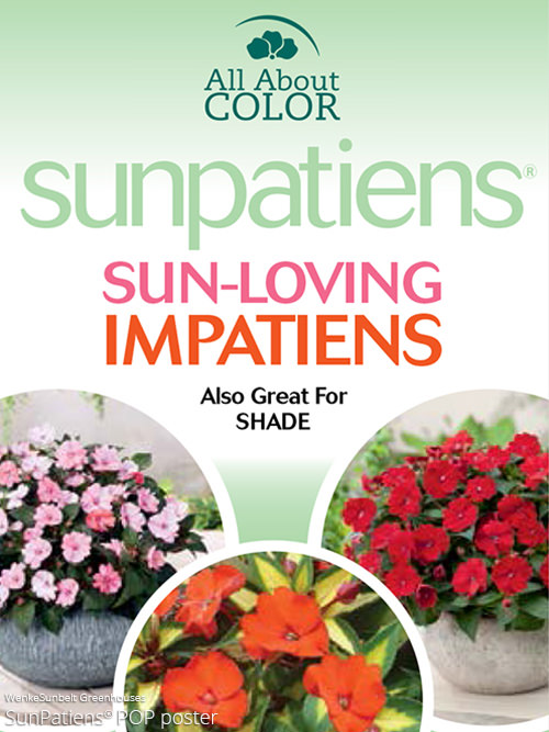 aac-sunpatiens-pop.jpg