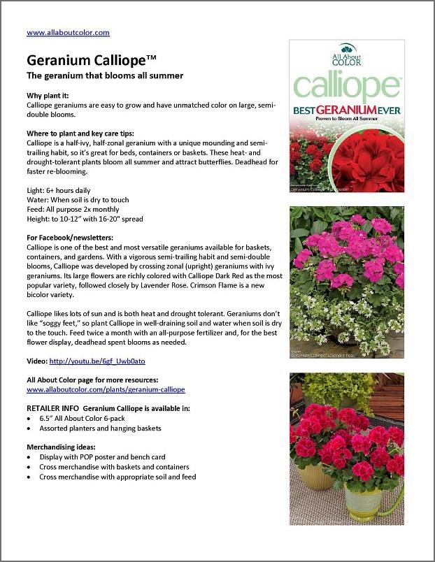 Geranium Calliope |  Doc  |  PDF  |