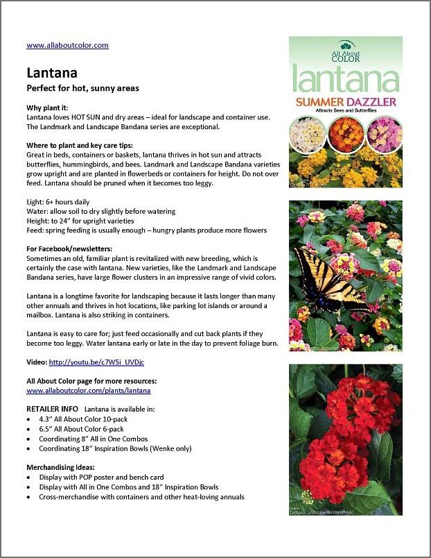 LANTANA |  DOC  |  PDF  |
