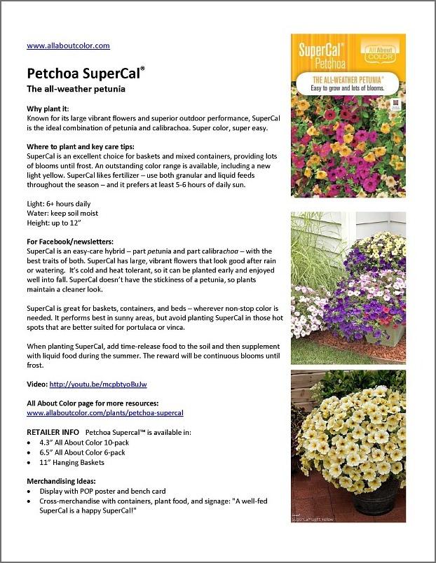PETCHOA SUPERCAL |  DOC  |  PDF  |