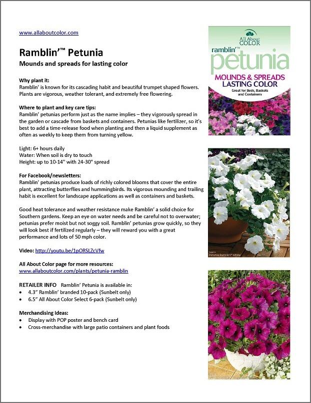 Petunia Ramblin' |  DOC  |  PDF  |