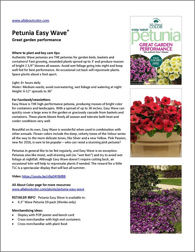PETUNIA Easy WAve |  DOC  |  PDF  |