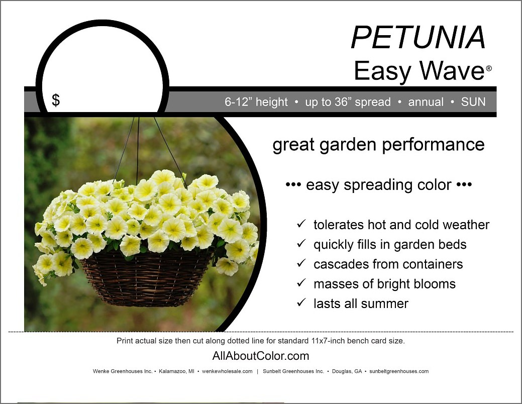 Petunia Easy Wave Bench Card |  PDF