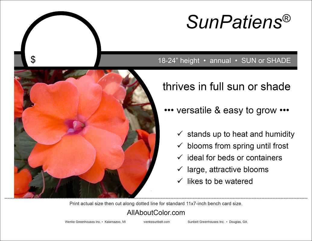 SUNPATIENS BENCH CARD |  PDF