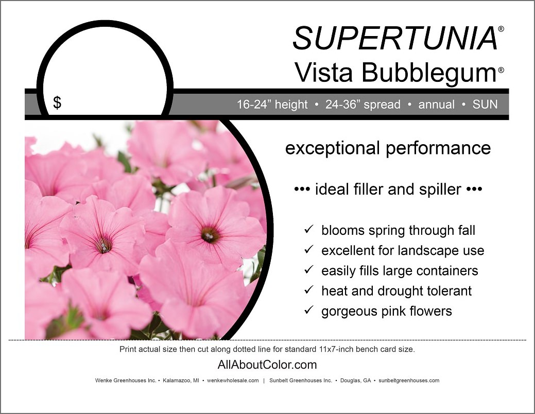 SuperTUNIA V. BUBBLEGUM bench card |  pdf