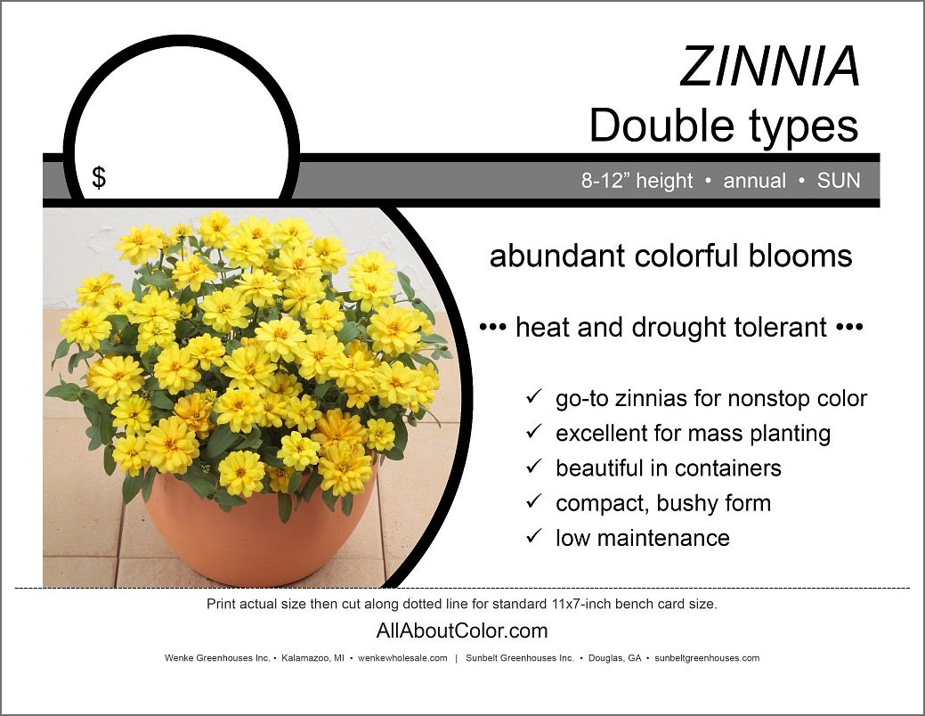 Zinnia Bench Card |  PDF