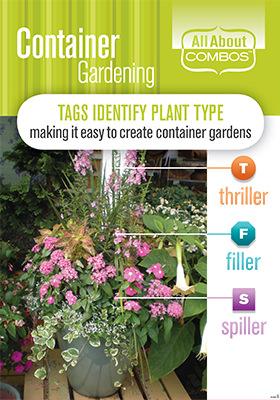 aac-pop-container-gardening.jpg