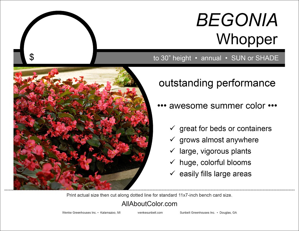 """Bench Card (Wenke  pdf ) • print actual size on 8.5"""" x 11"""" stock for best results"""