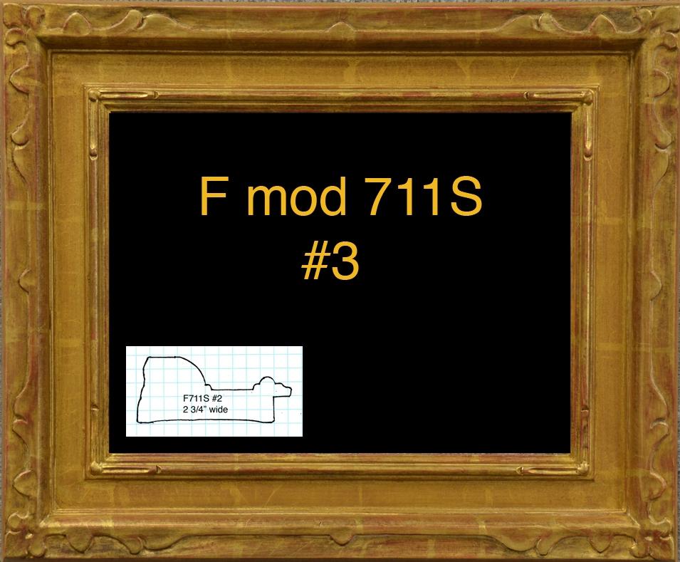 FMod711S #3 copy.jpg