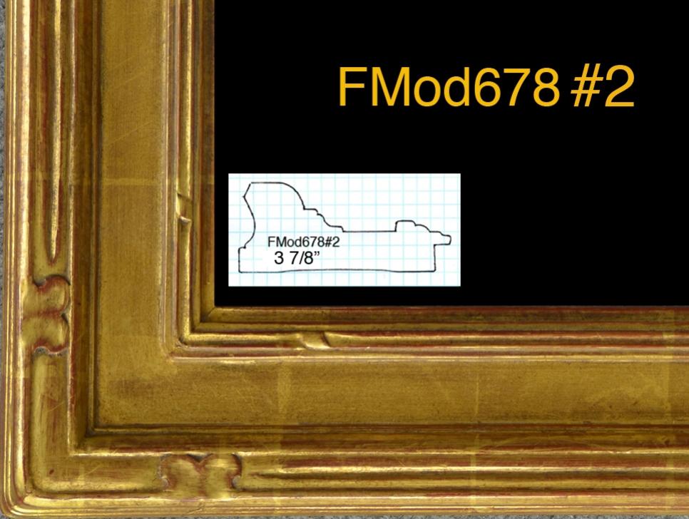 FMod678#2 copy.jpg