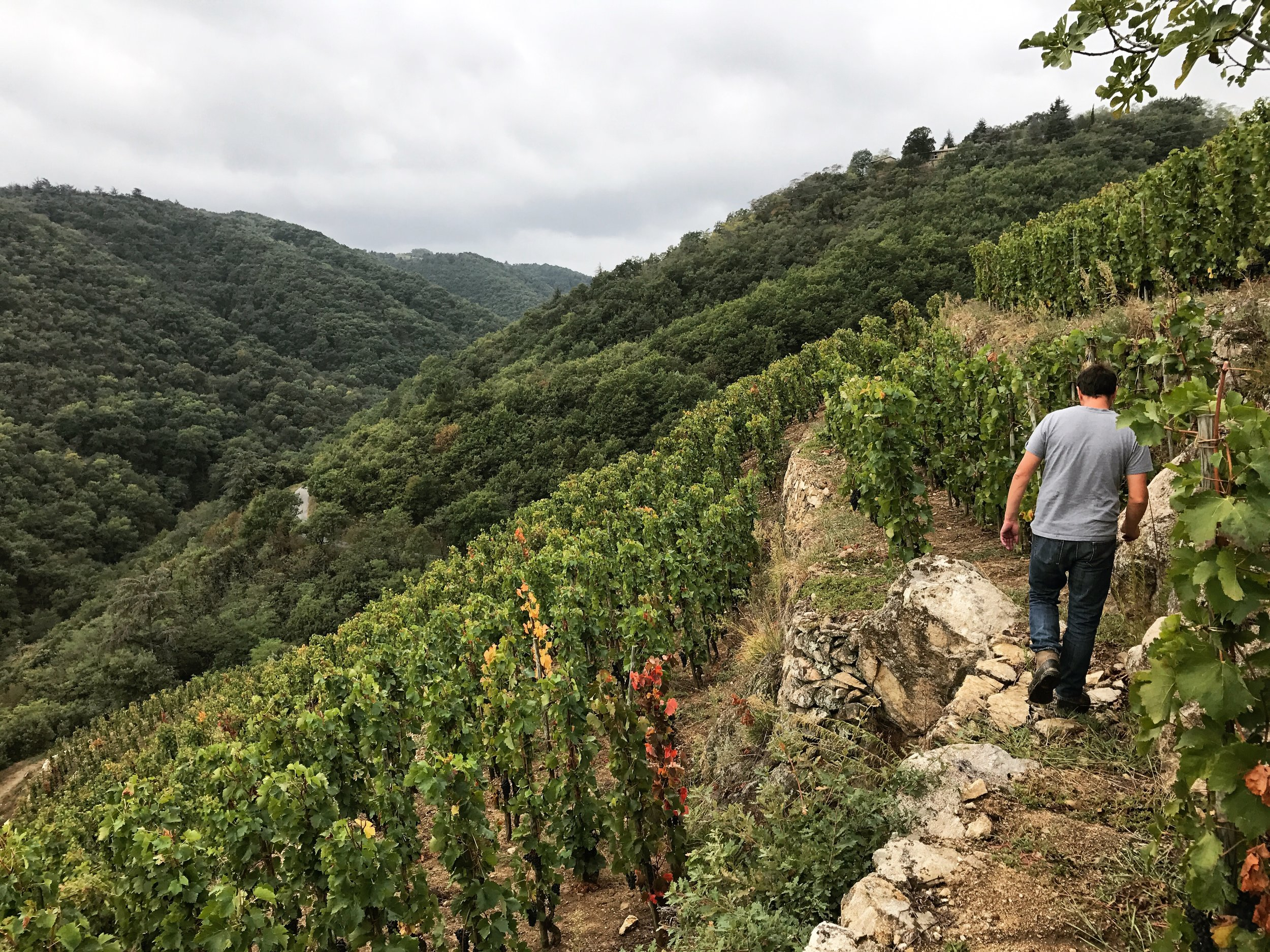 Jean-Louis Chave on one of his reclaimed hillside vineyards in St. Joseph.
