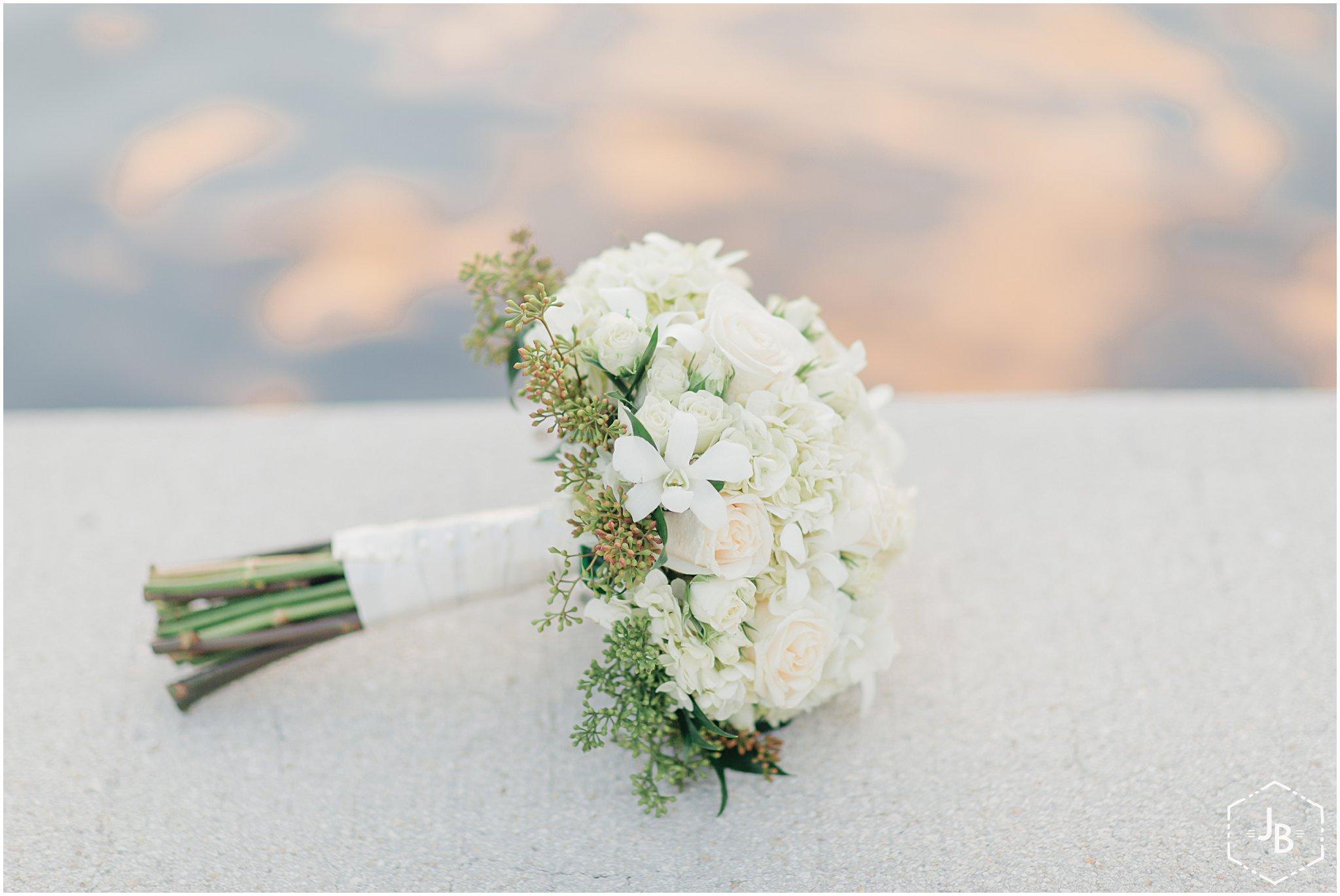 WeddingandEngagementFloridaPhotographer_0380.jpg