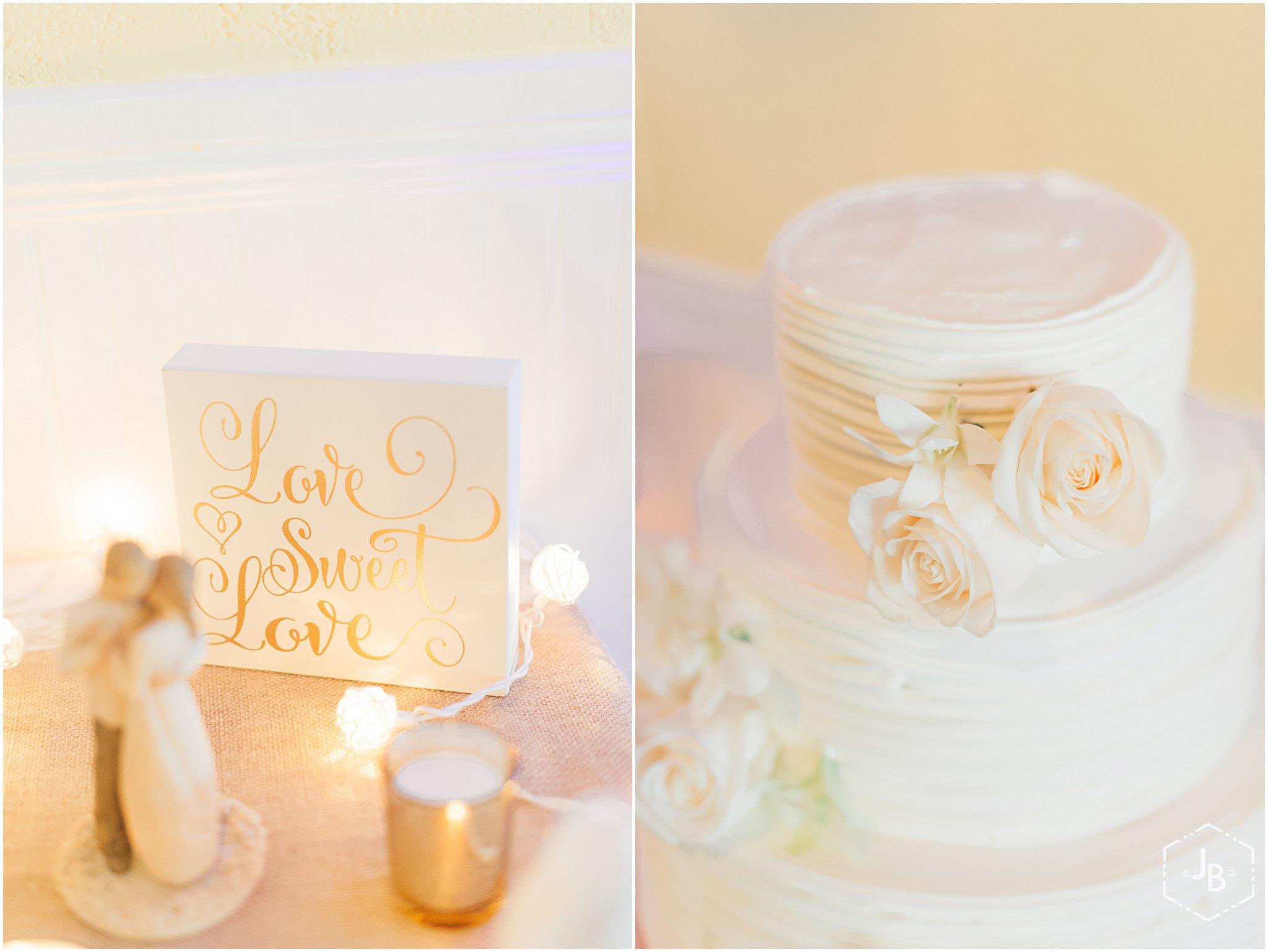 WeddingandEngagementFloridaPhotographer_0387.jpg