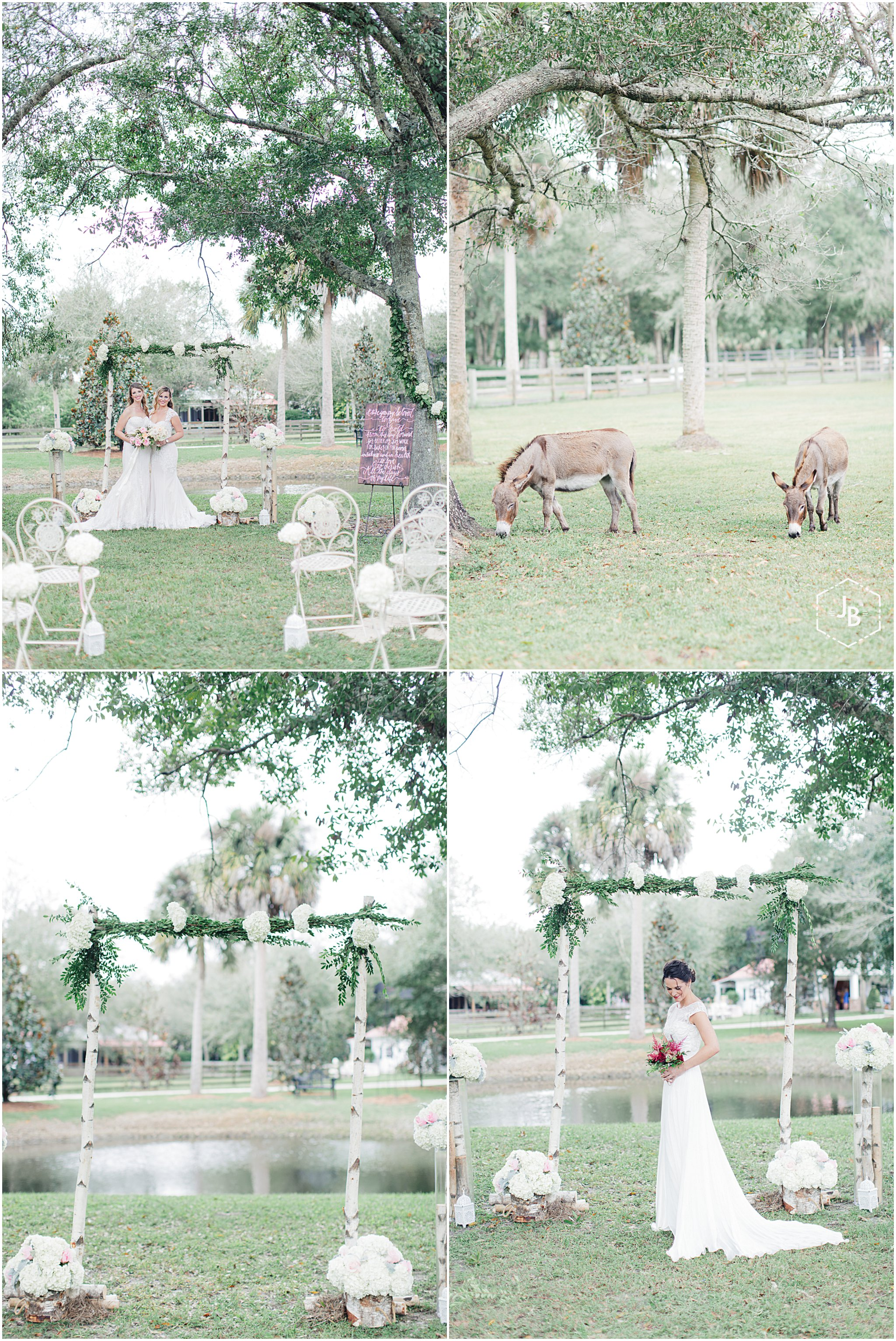 WeddingandEngagementFloridaPhotographer_0437.jpg