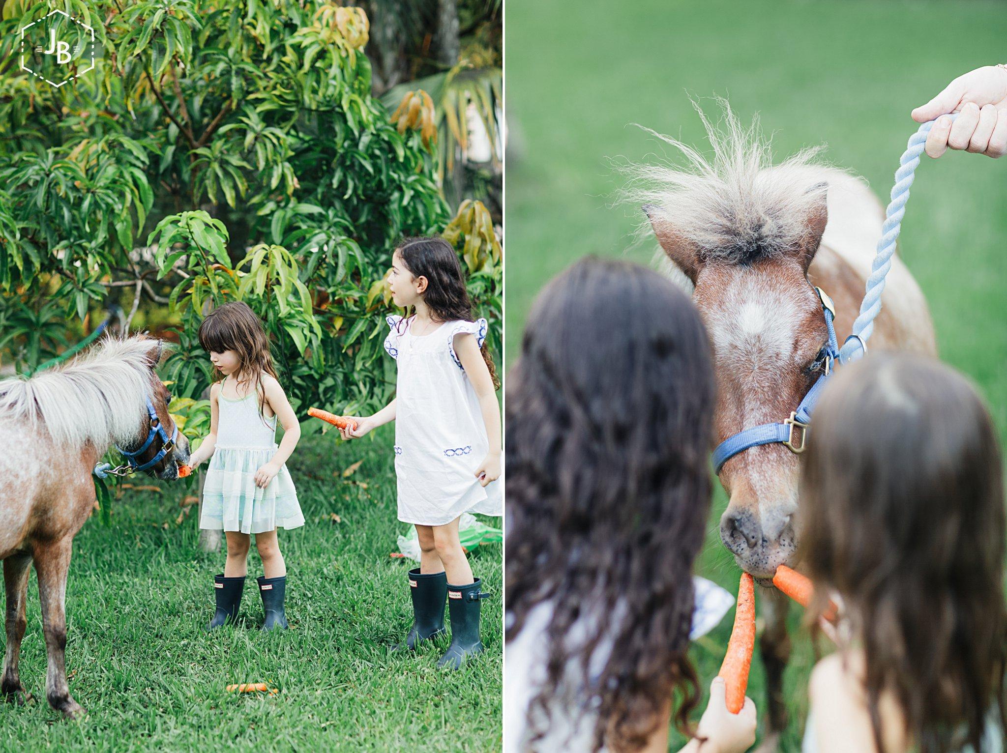 WeddingandEngagementFloridaPhotographer_2875.jpg