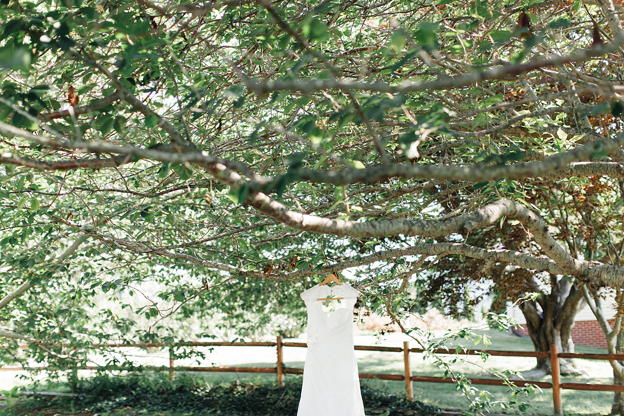 WeddingandEngagementFloridaPhotographer_2899.jpg