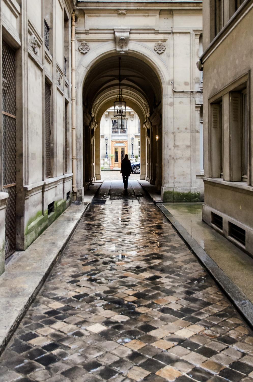 Paris Passage-2013.jpg
