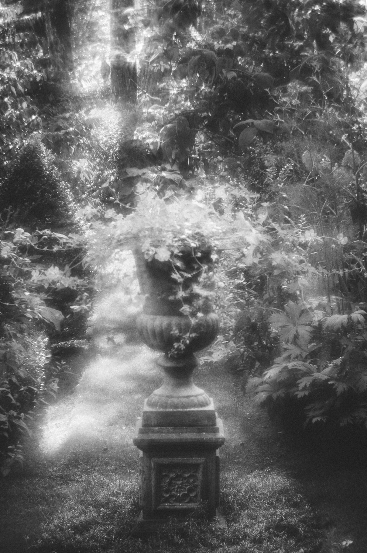 Jardin Retiré-soft focus-lensbaby-2013.jpg