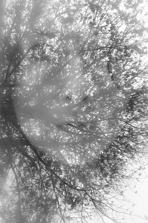 Closer to me-12013.jpg