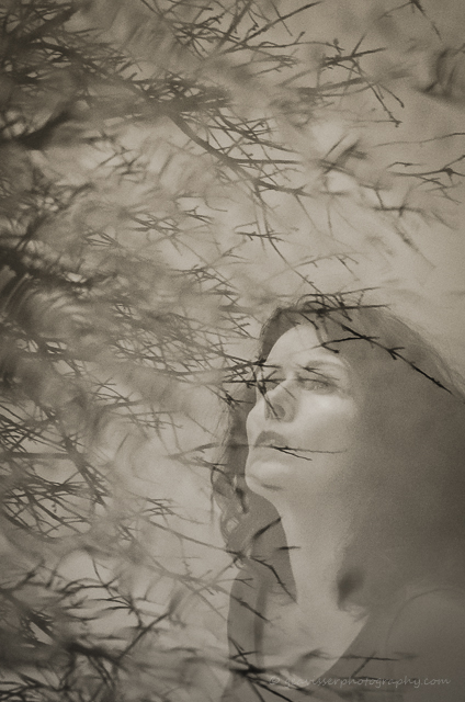 underneath the cherry tree-2014-3-2.jpg