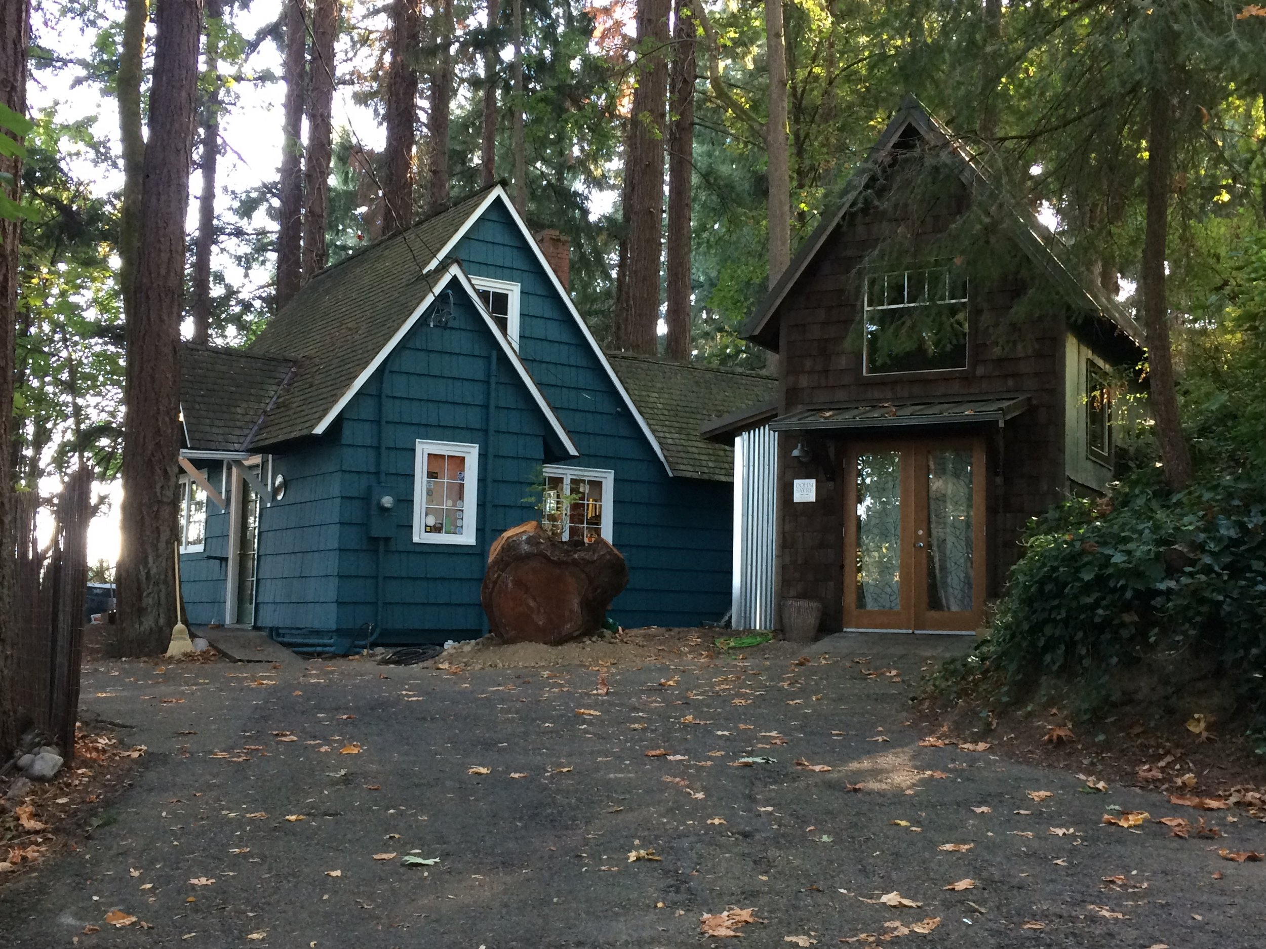 Our 1940 Cedar cabin under the trees, and overlooking Capitol Lake in Downtown Olympia, Washington.