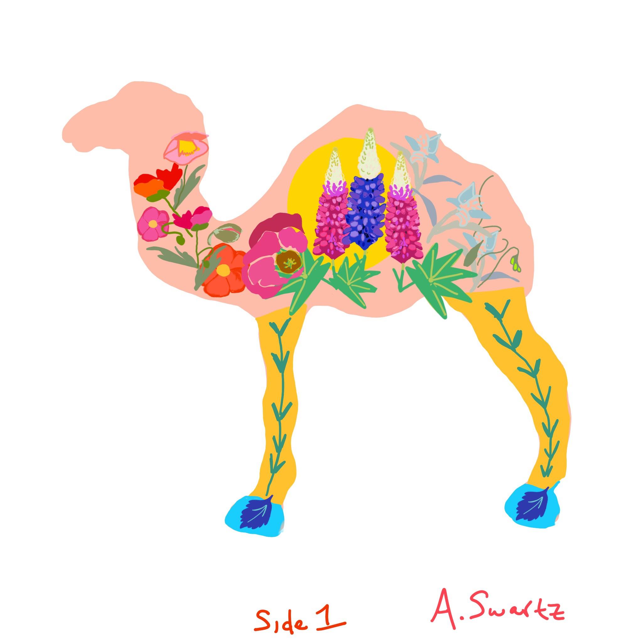 A.Swartz.Camel.Sketch.1.jpg