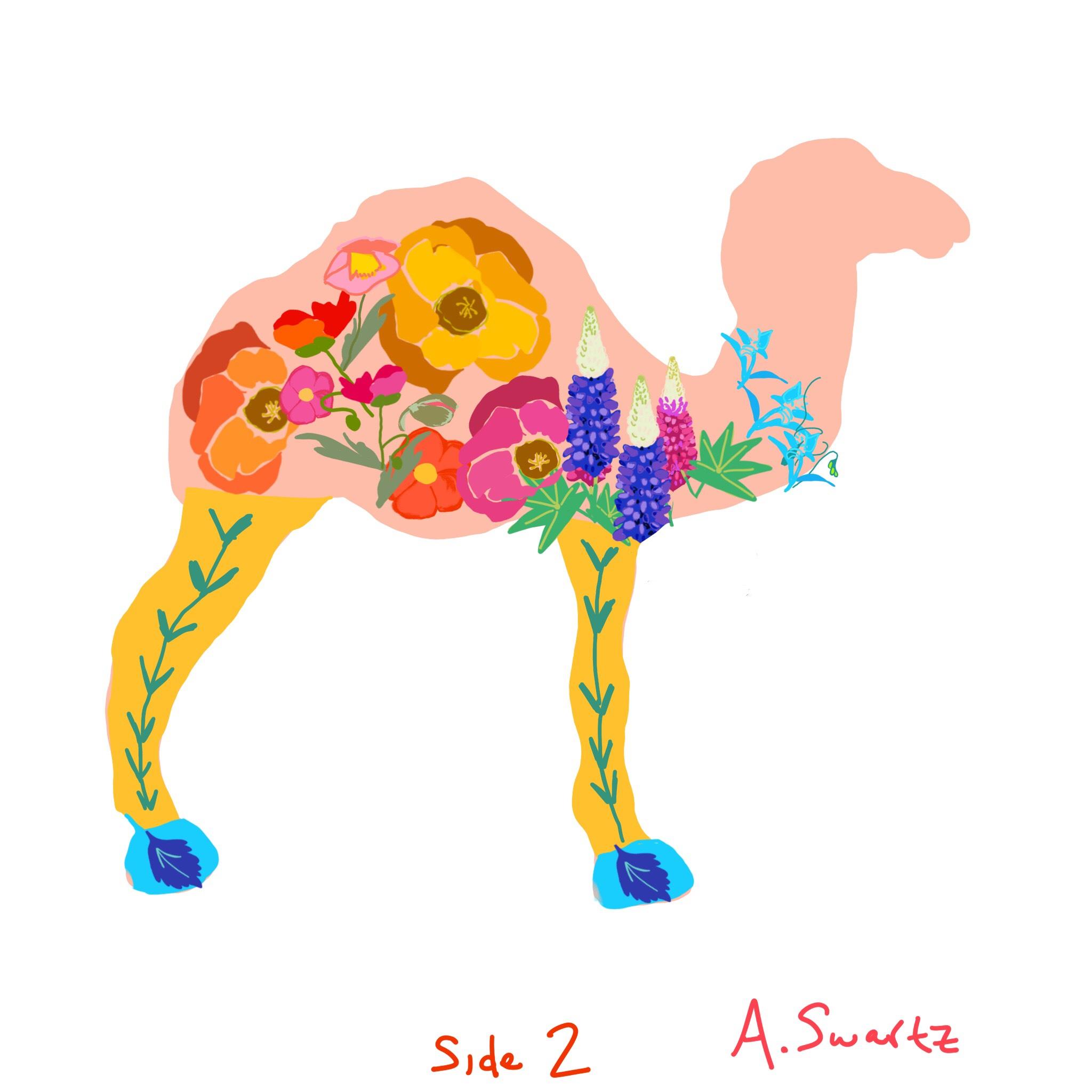 A.Swartz.Camel.Sketch.2.jpg