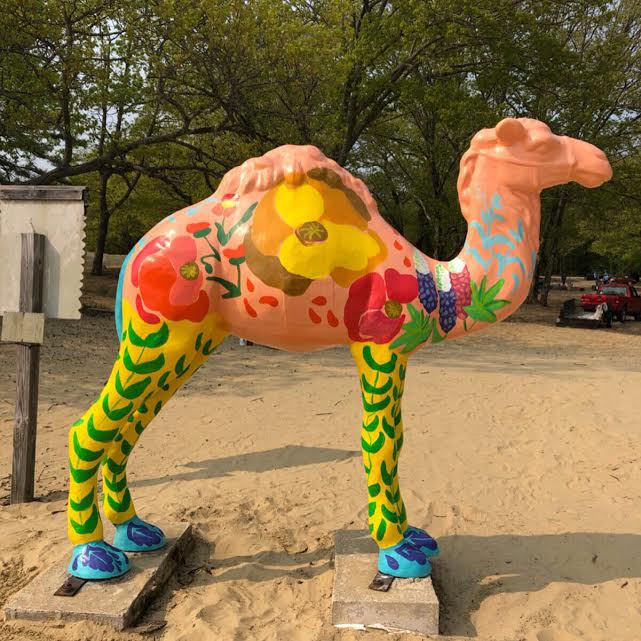 Painted.Camel.Statue.Desert.of.maine.jpeg