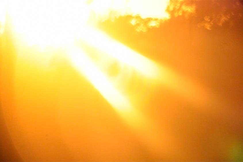 Prodigal Sun , 2012