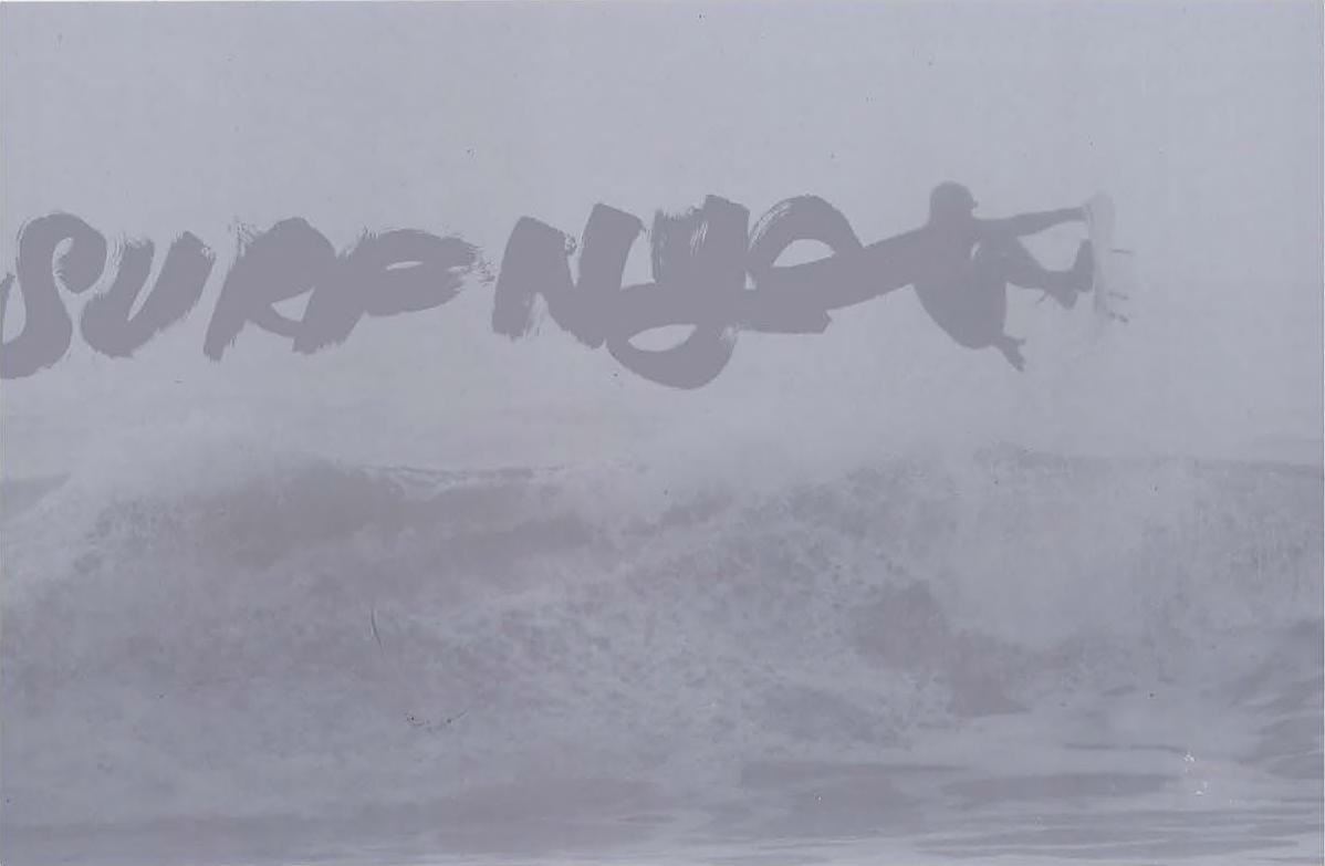 George_Bates_SURF_NYC_COVERcomps1_Page_017.jpg