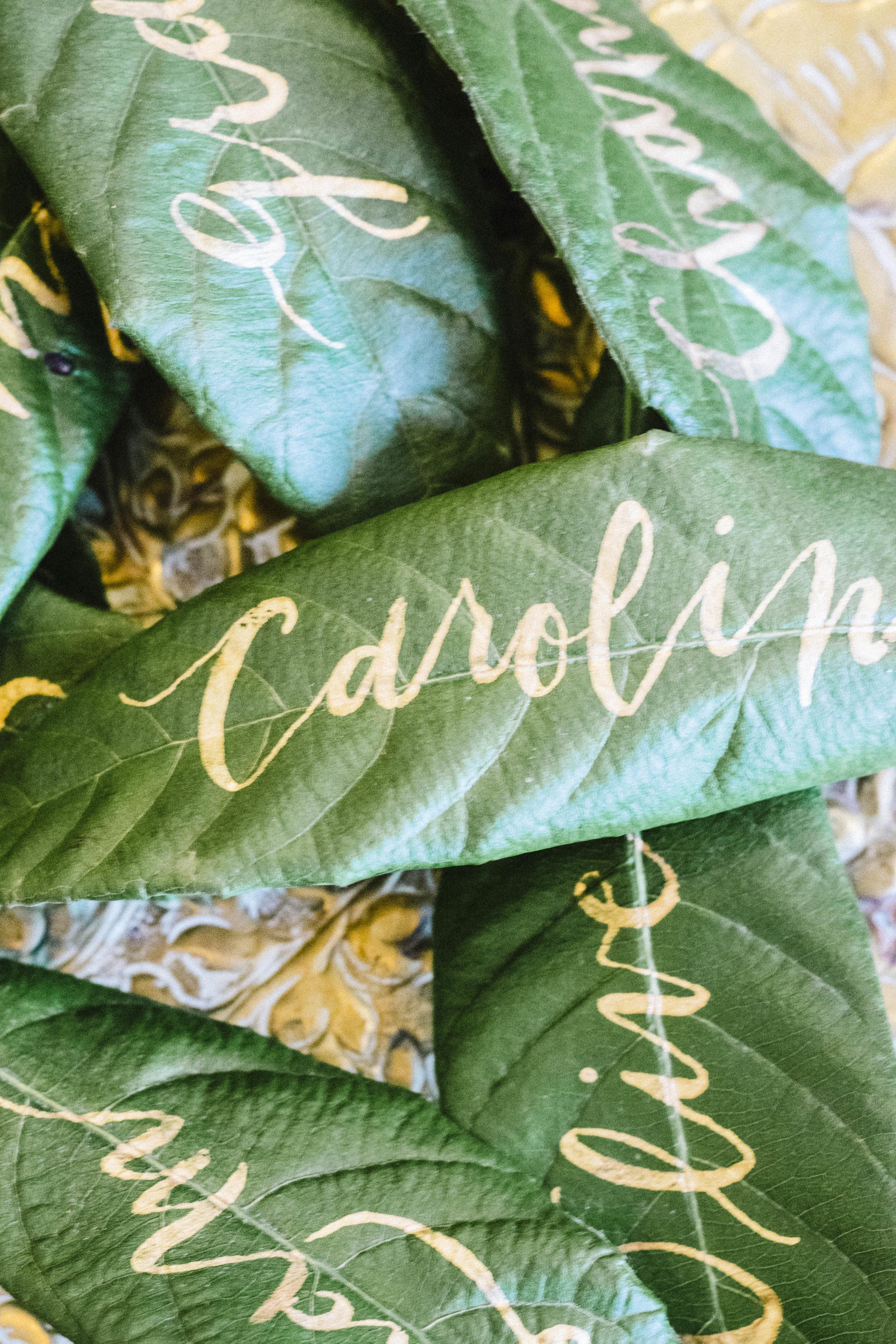 leaves-17.jpg