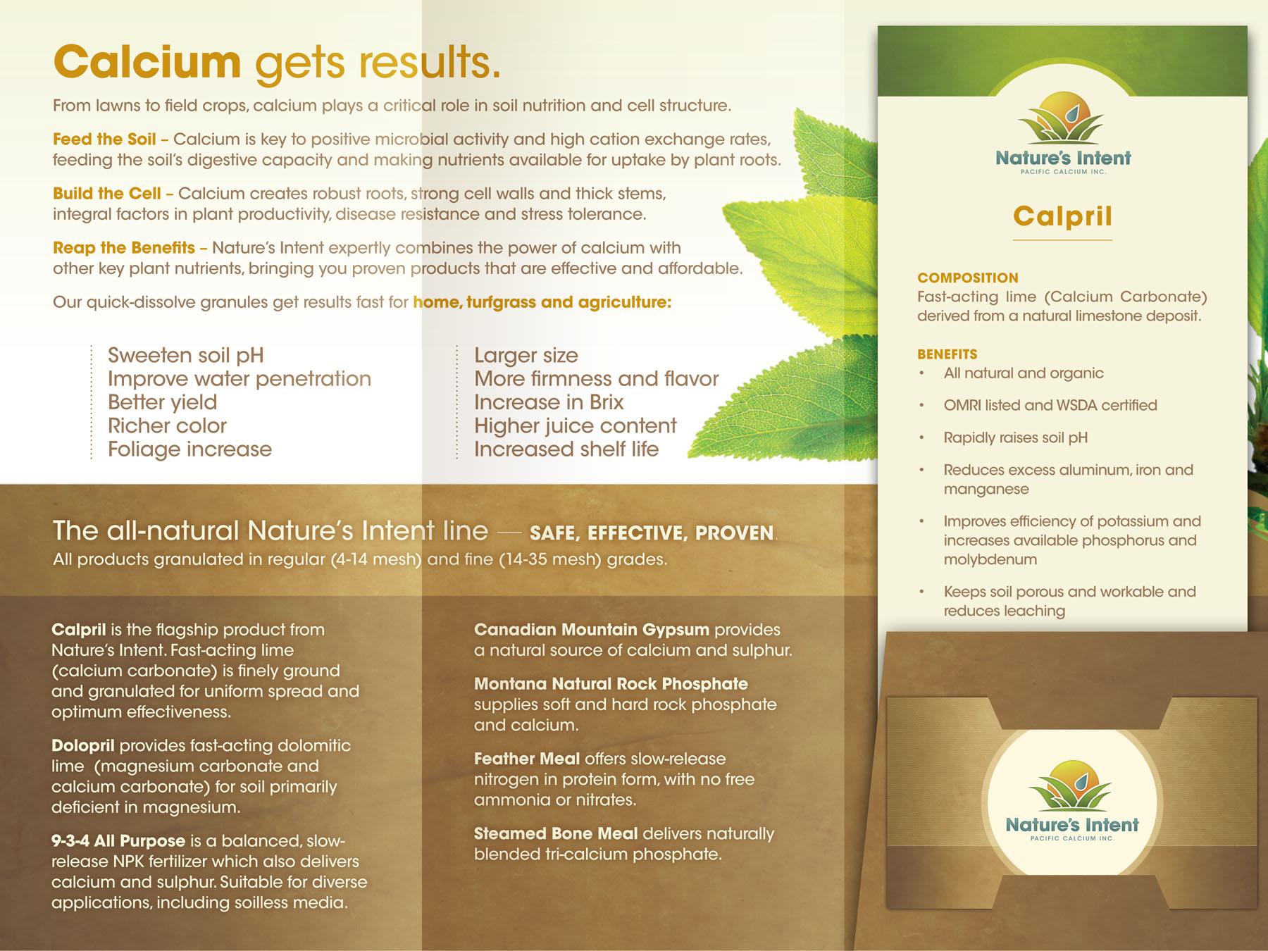 Branding, brochure direction/design and copywriting.