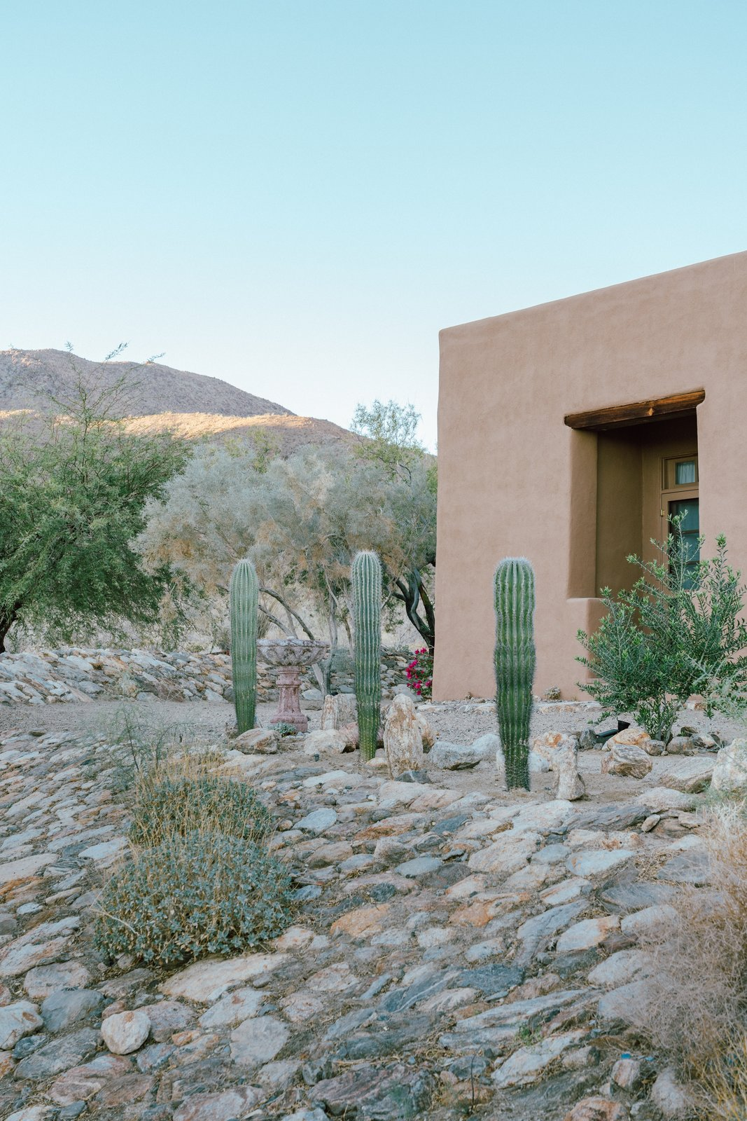 Outside, Young incorporated decomposed granite, native plant species, and large date palms. She moved a lot of rocks around to add to the natural desert feel she wanted for the property. (Tim Melideo)