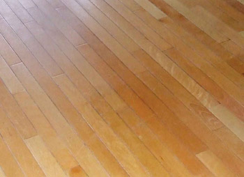 Gray lines along the edges of these boards are damage resulting from a steam mop cleaner.