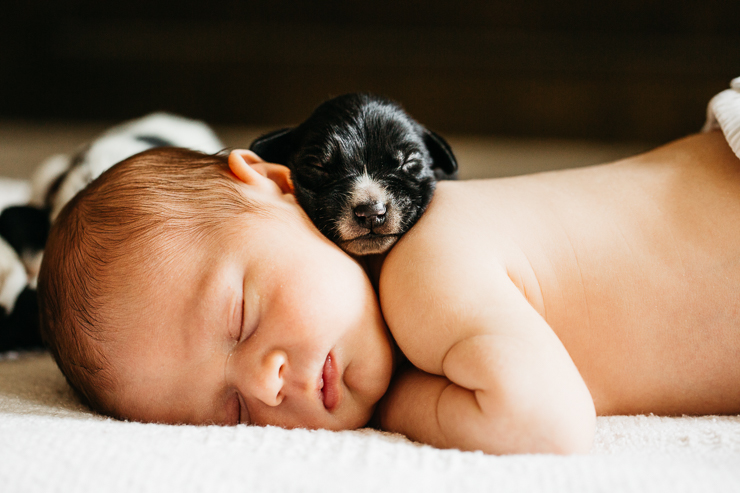 Newborn Baby Photography with puppies