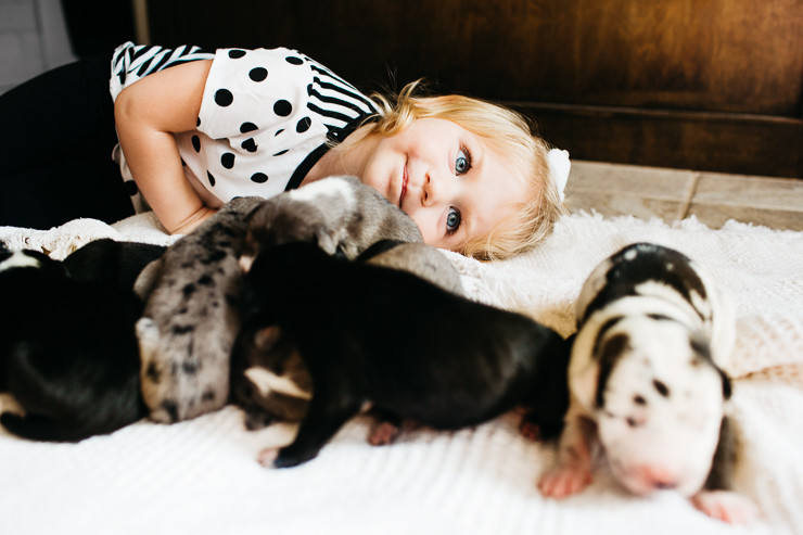 Little girl and puppies