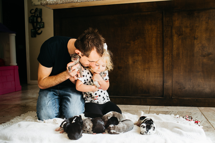 Father and Daughter holding great dane puppies