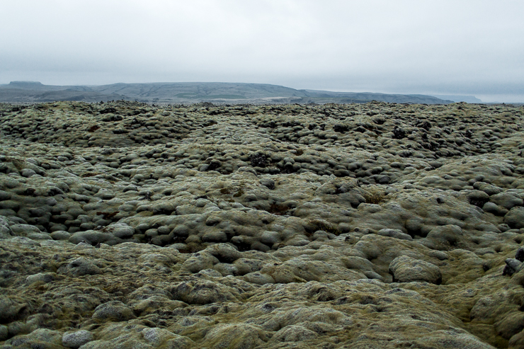 Volcanic aftermath with moss in southern Iceland